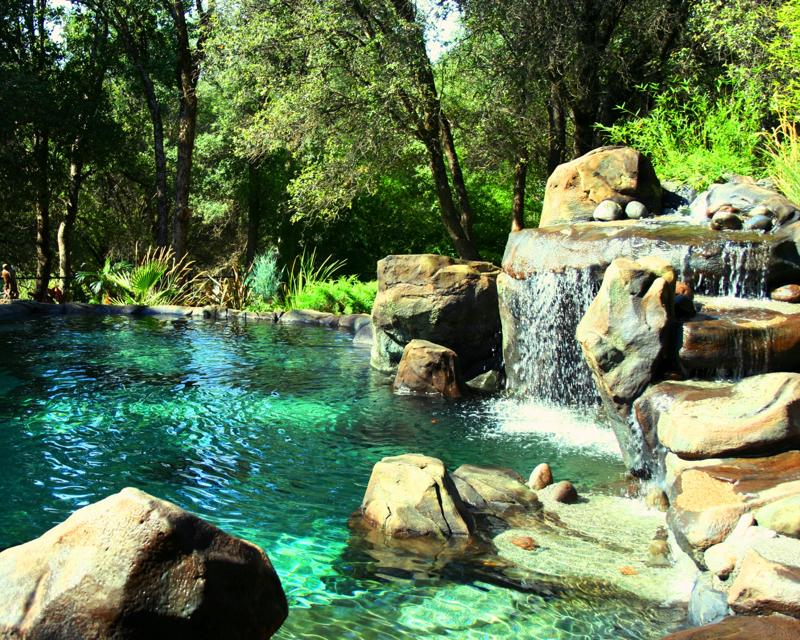 natural swimming pool ideas on pinterest natural
